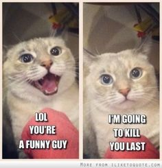 LOL you're a funny guy. I'm going to kill you last.