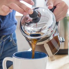 Which French Press Should I Buy? A FrenchPress Buying Guide