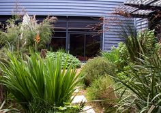 Eco Creations - innovative landscaping and environmental solutions