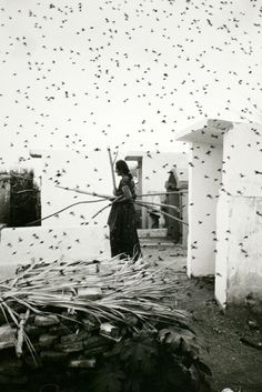 "© Graciela Iturbide, 1988, Cemetery, Juchitán, México  ""The only real equality is in the cemetery."" (German Proverb)  (thanks to / via: undr)"