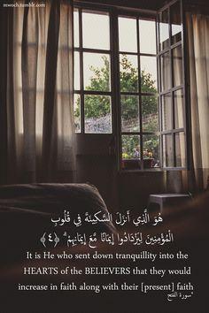 Quran (48:4)  This sura speaks to me alhamdulilah