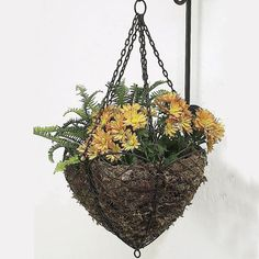 Both indoors or outside, this French wire hanging basket with its antique brown finish and sturdy construction, will add a classical, European touch to your home.  Choose a bracket from our extensive ...