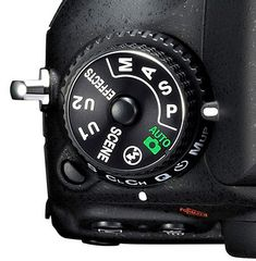 Programmed Auto: A Helpful Overlooked Exposure Mode on DSLR Cameras