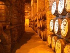 barrels of miracles XD