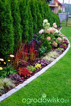 Wizytówka - ogrodowe przygody - My Gardening Space Front Yard Garden Design, Garden Yard Ideas, Garden Edging, Garden Projects, Privacy Landscaping, Front Yard Landscaping, Arborvitae Landscaping, Landscaping Trees, Outdoor Landscaping