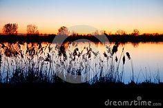 Sunset in pianura Padana, Emilia, Novi di Modena, Italy