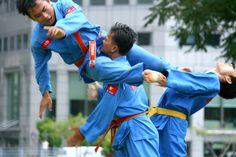 martial arts demo at Singapore's ACM Vietnamese festival...a martial arts performance