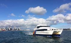 Devonport ferry.
