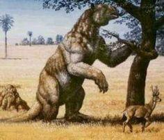 megatherium (prehistoric giant sloth) My favorite prehistoric creature
