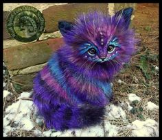 Handmade Poseable LIFE SIZED Fantasy Stardust Kitten Sold for  $1,284.99 on ebay..  I should be rich..