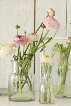 Put them in little glass  vases