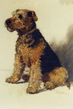 Vintage Art~Airedale Puppy Dog Dogs Sitting~ NEW Large Note Cards | Collectibles, Animals, Dogs | eBay!