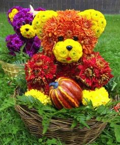 Celebrate this Harvest Season with Blooming Bears. They are the Best gift idea for Thanksgiving, Halloween, Grandparents' Day, Fall Birthday, Thank You Gift and more. Available in New York.
