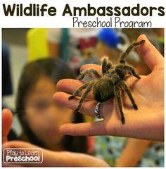 Wildlife Ambassadors