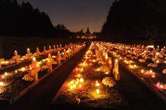 Velas arden en el cementerio central de Szczecin (Polonia) durante el Día de Todos los Santos. (EFE/VANGUARDIA LIBERAL)