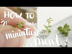 Video demonstrations by miniaturist artist Angie Scarr, dating from the to present day, covering a huge range of techniques but specialising in polymer c. Polymer Clay Miniatures, Dollhouse Miniatures, Miniature Plants, Miniature Food, Mini Plants, Polymer Clay Flowers, Clay Tutorials, Diy Doll, Clay Projects