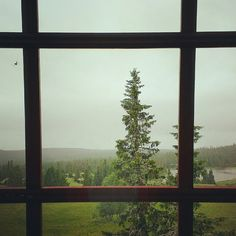The view from the first house was so lovely!