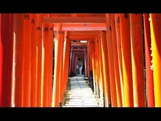開運の神社仏閣・パワースポット - 根津神社のパワースポット(根津)