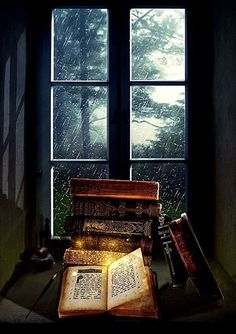 The Enchantment of Books ♡