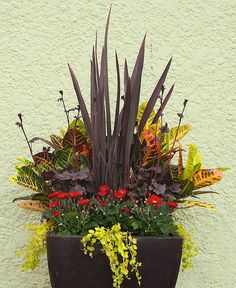 Learn the dos and don'ts of creating jaw-dropping containers