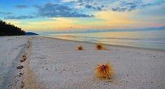 @Regrann from @enjoybelitung_ -  Pantai Tambak Desa Sukamandi Belitung Timur (Beltim) Repost : @somnambulis . . . Jgn lupa tag dan follow kita @enjoybelitung_ . Dengan hastag #enjoybelitung  . . #pantaitambak #belitungtimur #belitung #explorebelitung #visitbelitung #belitungisland #belitungtrip #beautifulbelitung #belitungindah #babelisland #travelgram #mtma #exploreindonesia #explorebangka #explorebabel #explorebeltim #indotravellers #parapejalan #beach #sea #opentrip #beautifulsunset #hiddenbeach  #lingkariindonesia #liveauthentic #livefolkindonesia #folkindonesia #wonderfulindonesia #enjoybabelisland #enjoybelitung Belitung, Hidden Beach, Travel Photography, Paradise, Places, Instagram Posts, Water, Outdoor, Gripe Water