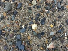Find the agates! a picture from one of our pebble picking adventures