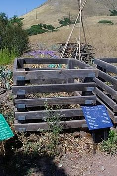 Compost! homesteading