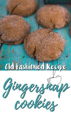 Traditional Christmas cookies made with molasses and rolled in sugar - a holiday tradition! Ginger Snaps Recipe, Ginger Snap Cookies, Roll Cookies, Yummy Cookies, Christmas Treats, Christmas Foods, Christmas Recipes, Cookie Recipes, Dessert Recipes
