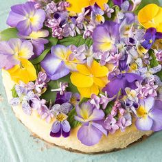 Creamy Lemon Cheesecake with Vanilla Wafer Crust- Creamy Lemon Cheesecake with Vanilla Wafer Crust Creamy Lemon Cheesecake with Vanilla Wafer Crust and Edible Flowers - Lemon Cheesecake, Cheesecake Recipes, Dessert Recipes, Cupcakes, Cupcake Cakes, Vanilla Wafer Crust, Edible Flowers Cake, Eatable Flowers, Great Recipes