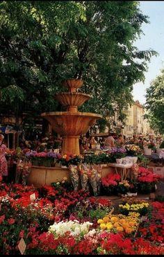 Grasse Flower Market, France