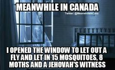 Meanwhile in Canada. I opened the window to let out a fly, and let in 15 mosquitoes, 8 moths and a Jehovah's Witness. Canadian Memes, Canadian Things, I Am Canadian, Canadian Humour, Canada Jokes, Canada Eh, You Funny, Hilarious, Funny Stuff