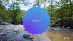 Calm | Breathe Bubble Calm App, Breathing Meditation, Mindfulness Practice, Feeling Lonely, Qigong, Being In The World, Wellness Fitness, Breathe, Bubbles