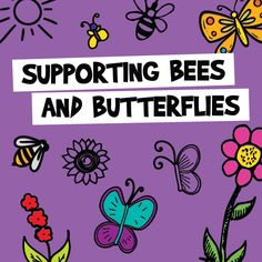 Butterflies and Bees Need Your Help - You can help by planting beautiful flowers, shrubs and trees that attract bees and butterflies