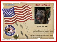 We would like to honor some Military War Dogs this Memorial Day