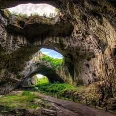 The Devetashka cave in Bulgaria is the region's largest karst cave and one of the most beautiful of its kind in the world. The cave is so big and so well lit by these roof-lights that substantial vegetation manages to grow inside.