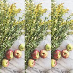 #summer #flowers #flowermagic #jollification #jollies #gettingmyjollies Skin Food, Summer Flowers, Natural Skin, Florals, Fruit, Instagram Posts, Nature, Products, Floral