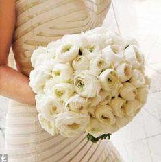 all white wedding?