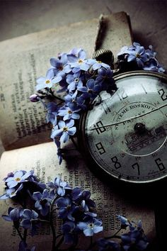 Ana Rosa Forget-me-not Somewhere In Time, Old Clocks, Vintage Clocks, Vintage Keys, Time Stood Still, As Time Goes By, Forget Me Not, Jolie Photo, Vintage Love