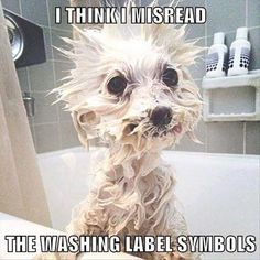 I think I misread the washing label symbols
