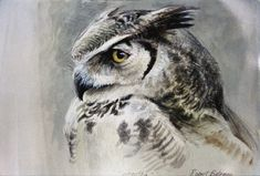 Samantha – Great Horned Owl by Robert Bateman  I have this S/N print