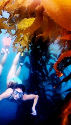 under water promenade in Del Mar, CA 2013