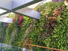 30 Gambar 32 Gambar Desain Taman Vertical Vertical Garden Terbaik Di 2020 Desain Taman Taman Desain