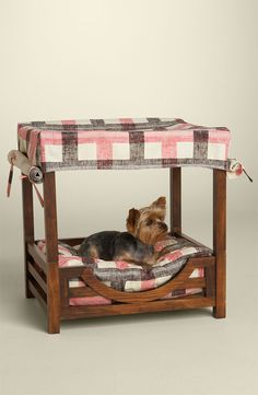 Tails in the City - Your dog deserves a stylish blog!: Juicy Couture Doggie Cabana
