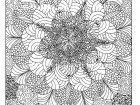 Display image coloring-adult-rosaces