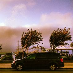 Watching the fog blow in over Aquatic Park   Outside the Buena Vista, San Francisco