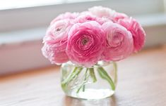 lovely pink flowers.