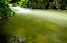 Forest Creek by Gabi Rusu on 500px
