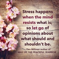"""Stress happens when the mind resists what is; so let go of opinions about what should and shouldn't be."" — Dan Millman, author of WAY OF THE PEACEFUL WARRIOR"