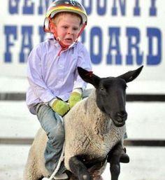 SHEEP WRANGLER  ---- hilarious jokes funny pictures walmart fails meme humor