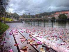 Margens do rio Vez em  Arcos de  na tarde ligeiramente molhada de hoje